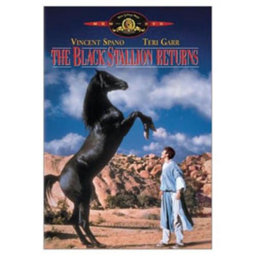 The Black Stallion Returns WSE/P&S DD5.1/DDS/DD1
