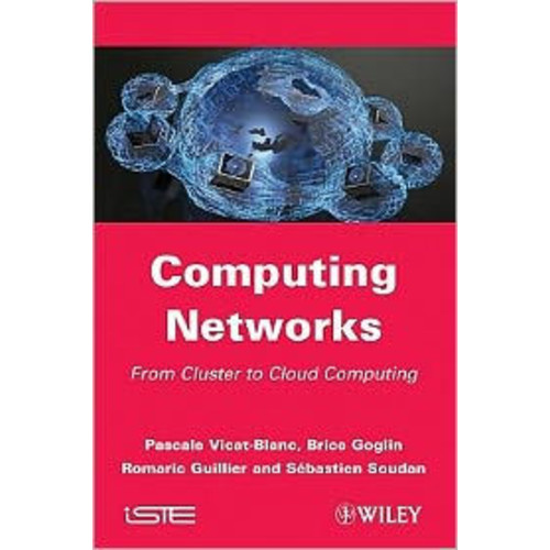 Cluster and Computing Networks / Edition 1