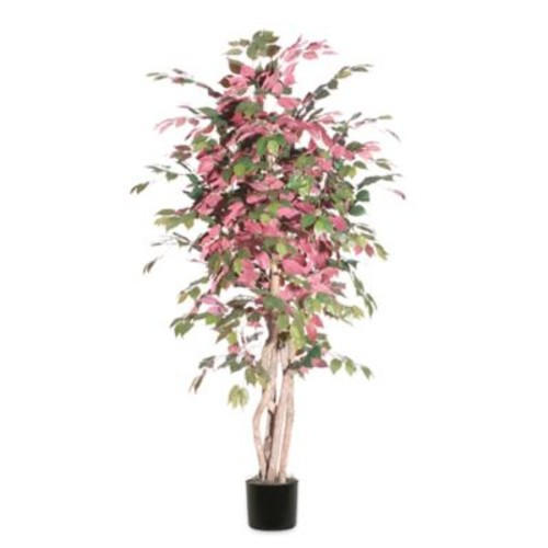 6-Foot Fabric Capensia Executive Tree with Black Pot