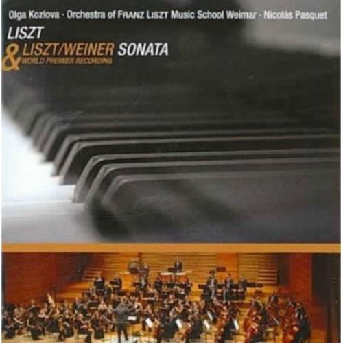 Liszt: recital Piano Sonata In B Minor CD (2002)