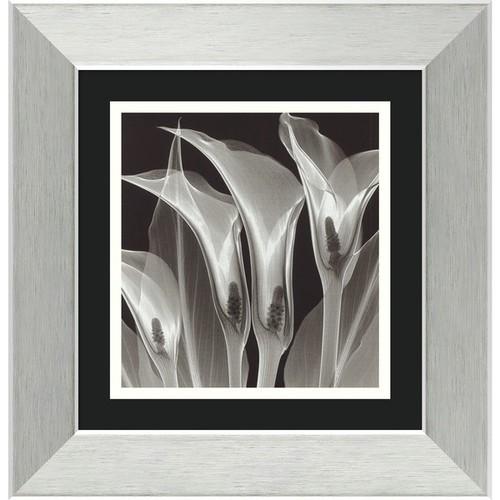 Framed Art Print 'Four Callas #3' by Steven N. Meyers 14 x 14-inch