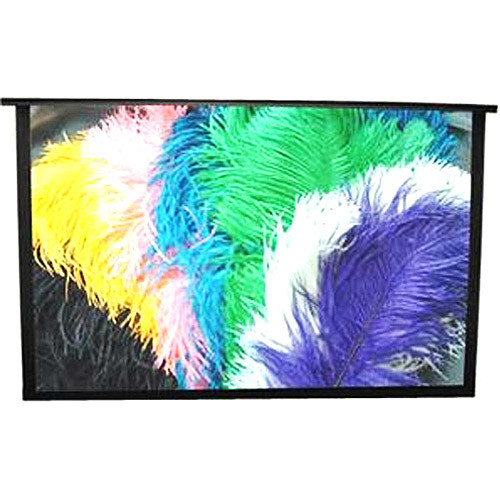 Draper 230166 77-Inch Piper HDTV Portable Screen (Discontinued by Manufacturer)