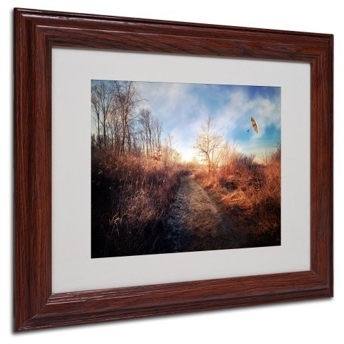 Blast of Wind Canvas Wall Art by Philippe Sainte-Laudy, Wood Frame, 11 by 14-Inch [11 by 14-Inch]