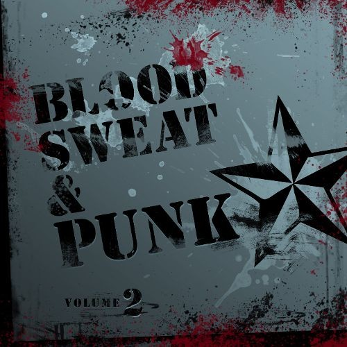 Blood Sweat And Punk:vol 2 CD (2013)