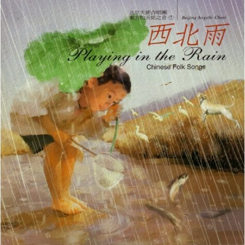 Playing In The Rain CD (2004)