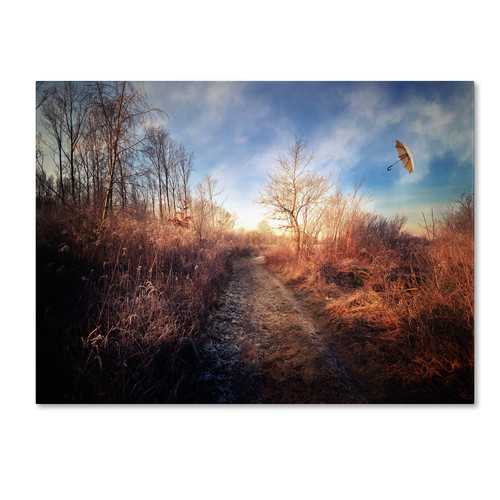 Trademark Global Philippe Sainte-Laudy 'Blast of Wind' Canvas Art [Overall Dimensions : 14x19]