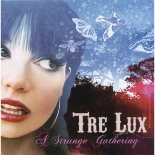 A Strange Gathering [CD]