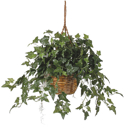 Nearly Natural English Ivy Hanging Basket