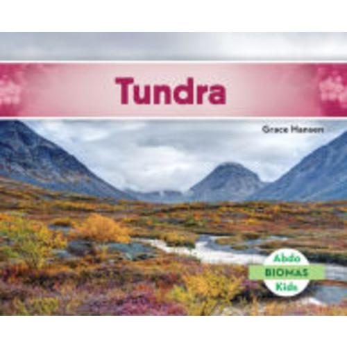 Tundra (Tundra Biome)