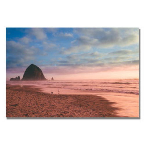 Trademark Global Canon Beach by Ariane Moshayedi Photographic Print on Canvas Size: 16