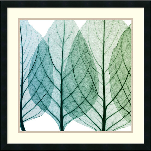 Framed Art Print 'Celosia Leaves I' by Steven N. Meyers 26 x 26-inch