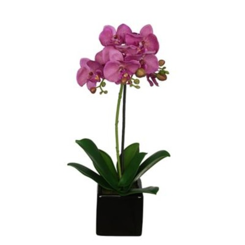 House of Silk Flowers Artificial Baby Cube Ceramic Orchid Flowers in Pot (Set of 2); Purple