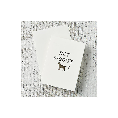S/10 Hot Diggity Dog Note Cards