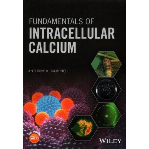 Fundamentals of Intracellular Calcium (Paperback) (Anthony K. Campbell)