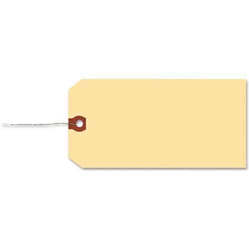 Avery 12608 Double Wired Shipping Tags, 13pt. Stock, 6 1/4 x 3 1/8, Manila (Box of 1000)
