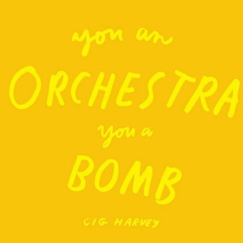 You an Orchestra You a Bomb (Hardcover) (Cig Harvey)