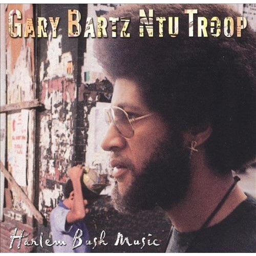 Harlem Bush Music [CD]