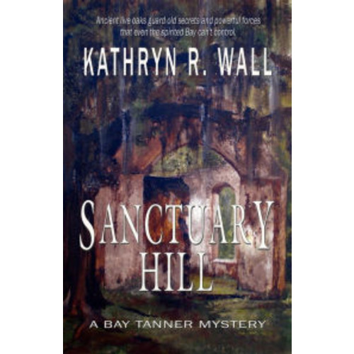 Sanctuary Hill (Bay Tanner Series #7)