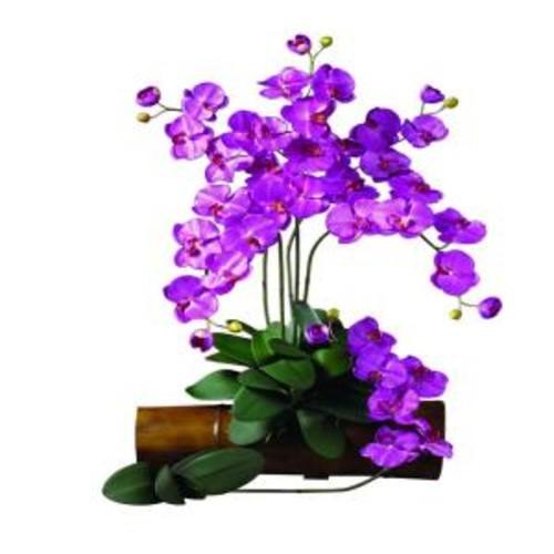 31.5 in. H Orchid Phalaenopsis Stem (Set of 12)