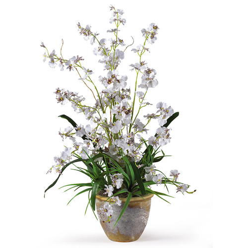 Nearly Natural Dancing Lady Silk Orchid Arrangement