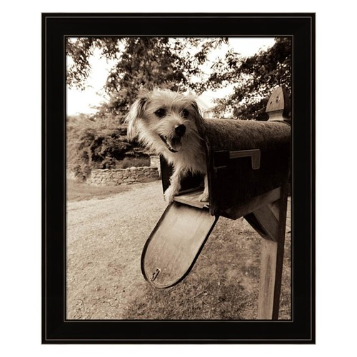 You've Got Mail Framed Wall Art