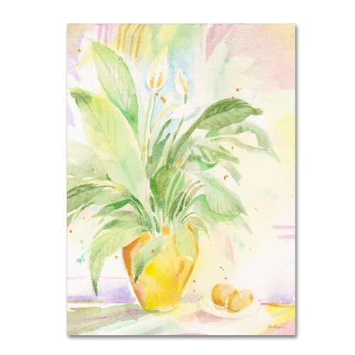 Trademark Global Sheila Golden 'The Peace Lily' Canvas Art [Overall Dimensions : 26x32]