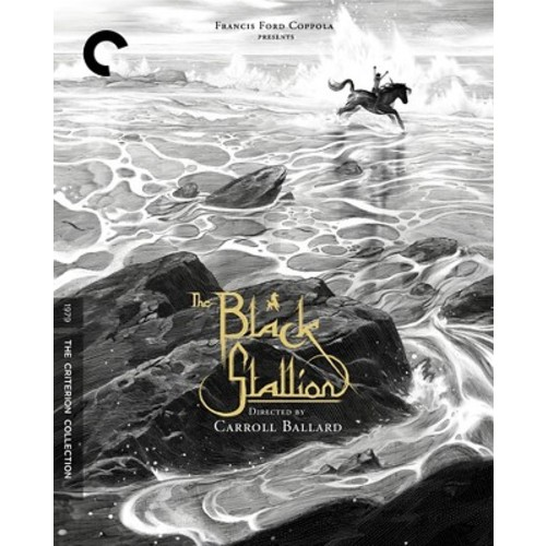 The Black Stallion [Criterion Collection]