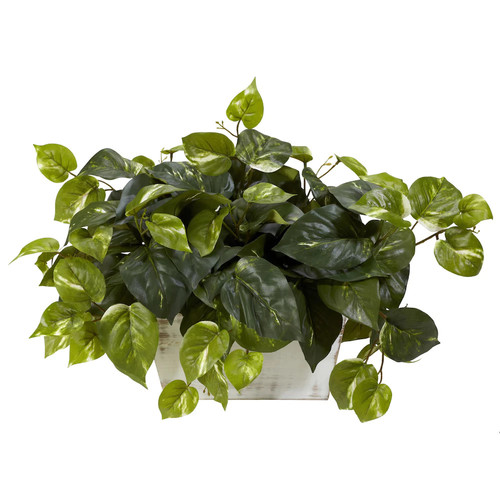 14 in. H Green Pothos with White Wash Planter Silk Plant
