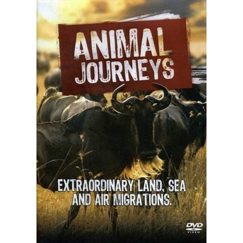 Animal Journeys [DVD] [2012]