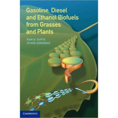 Gasoline, Diesel and Ethanol Biofuels from Grasses and Plants