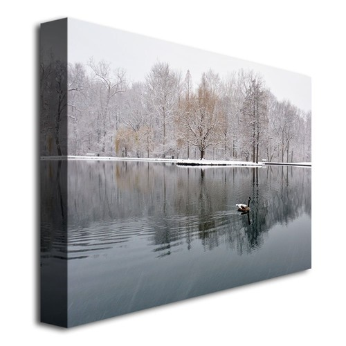 Winter Goose by Kurt Shaffer, 18x24-Inch Canvas Wall Art [18 by 24-Inch]