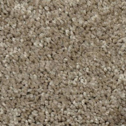 Home Decorators Collection Powder Springs III - Color Brandon Twist 12 ft. Carpet