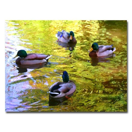 Trademark Global Amy Vangsgard 'Four Ducks on Pond' Canvas Art [Overall Dimensions : 18x24]