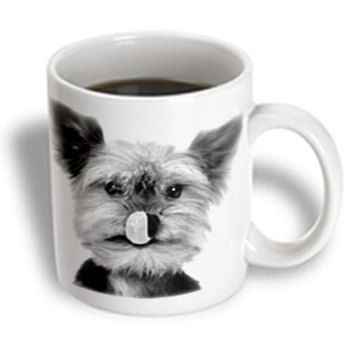 3dRose - VWPics Dogs n Cats - Yorkshire terrier - 11 oz mug