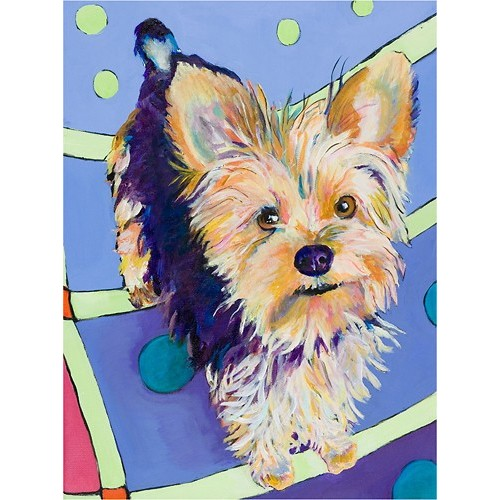 Trademark Art - Pat Saunders-White Claire Gallery-Wrapped Canvas - Multicolor