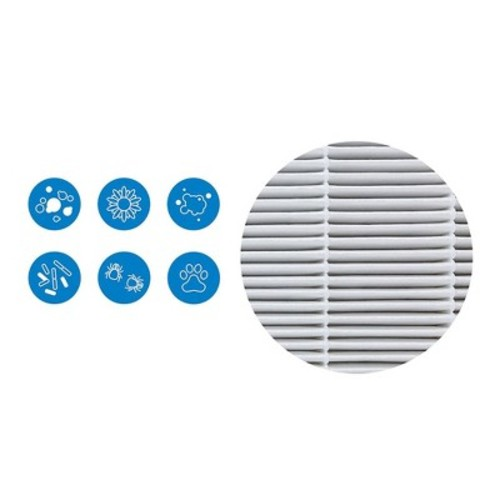 Blueair Classic Replacement Filter, 400 Series Genuine Particle Filter, Pollen, Dust, Removal; Compatible with Classic 402, 403, 410, 450E, 455EB, 405 [400 Series: Particle Filter]