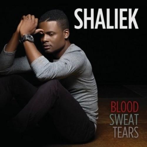 Blood Sweat Tears-CD