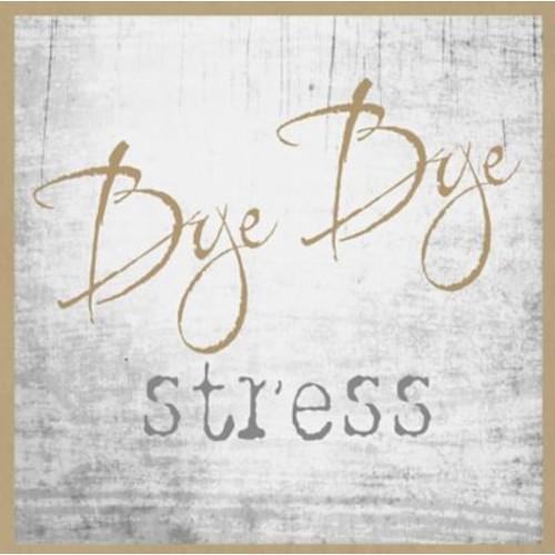 Graffitee Studios Typography 'Bye Bye Stress' Textual Art on Wrapped Canvas