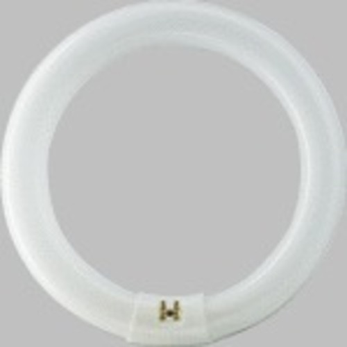 Philips 262600 32W 12-Inch Daylight Deluxe Circline Fluorescent Bulb