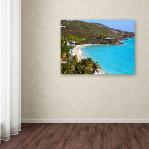 Virgin Islands 10 by CATeyes, 14 by 19-Inch Canvas Wall Art [14 by 19-Inch]
