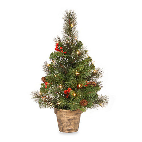 National Tree 2-Foot Crestwood Spruce Tree With White Lights