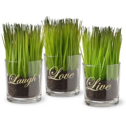 National Tree Company 3-Piece Sprout-Filled Glass Assortment, 1 Count
