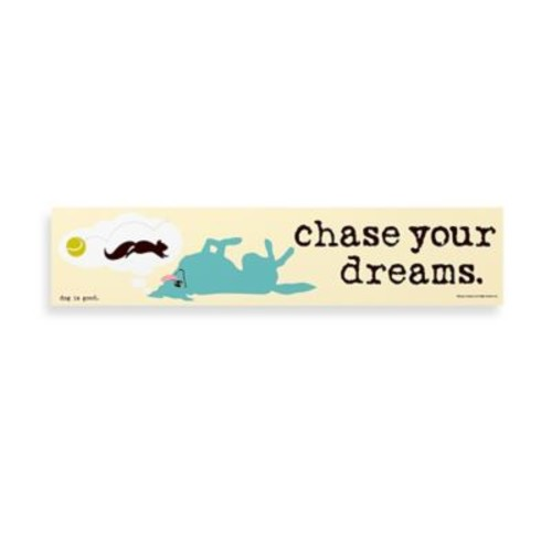 Chase Your Dreams Decorative Sign