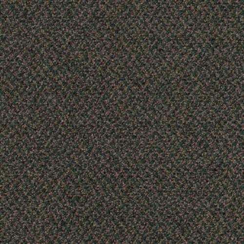 TrafficMASTER Difference Maker - Color Jungle 12 ft. Carpet