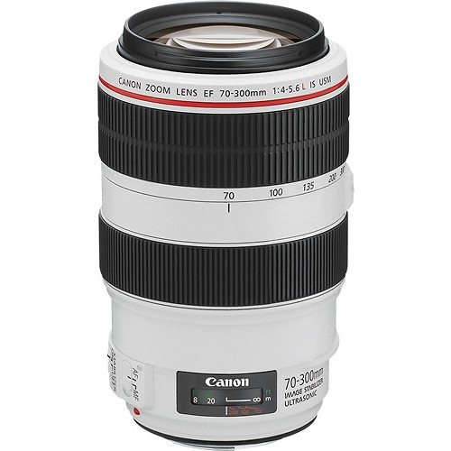 Canon EF 70-300mm f/4-5.6L IS USM UD Telephoto Zoom Lens for Canon EOS SLR Cameras [Lens Only]