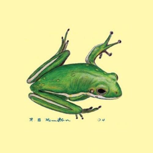Betsy Drake Interiors Tree Frog Coaster (Set of 4)