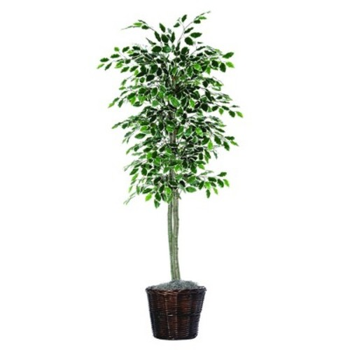 Artificial Variegated Ficus Tree (6