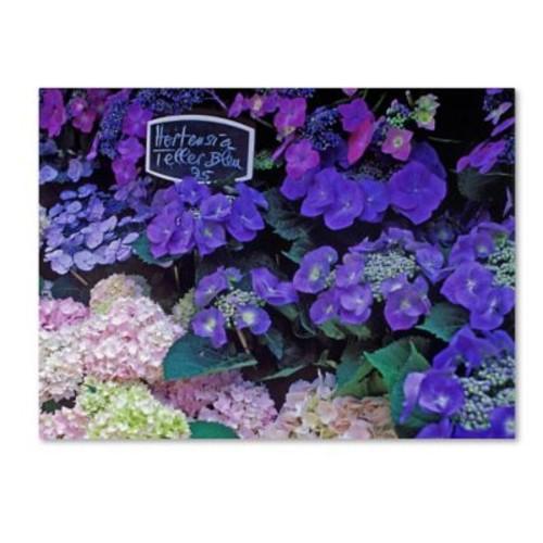 Trademark Fine Art 'Paris Flower Market Hydrangeas' 24