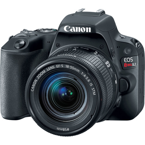 Canon 2249C002-kit-99015 EOS Rebel SL2 Wi-Fi Camera + EF-S 18-55 IS STM Lens + 75-300 Lens + 64GB + Flash + Video Light + Batt +
