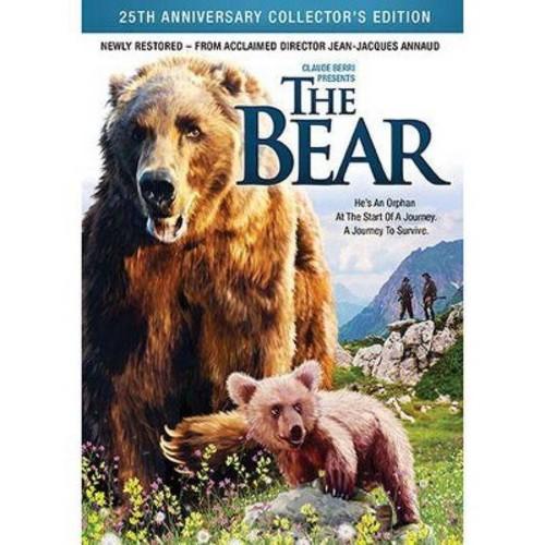 Bear (DVD)